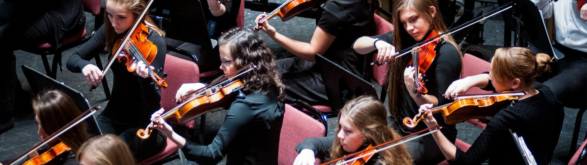 Youth Orchestra Spring Concert